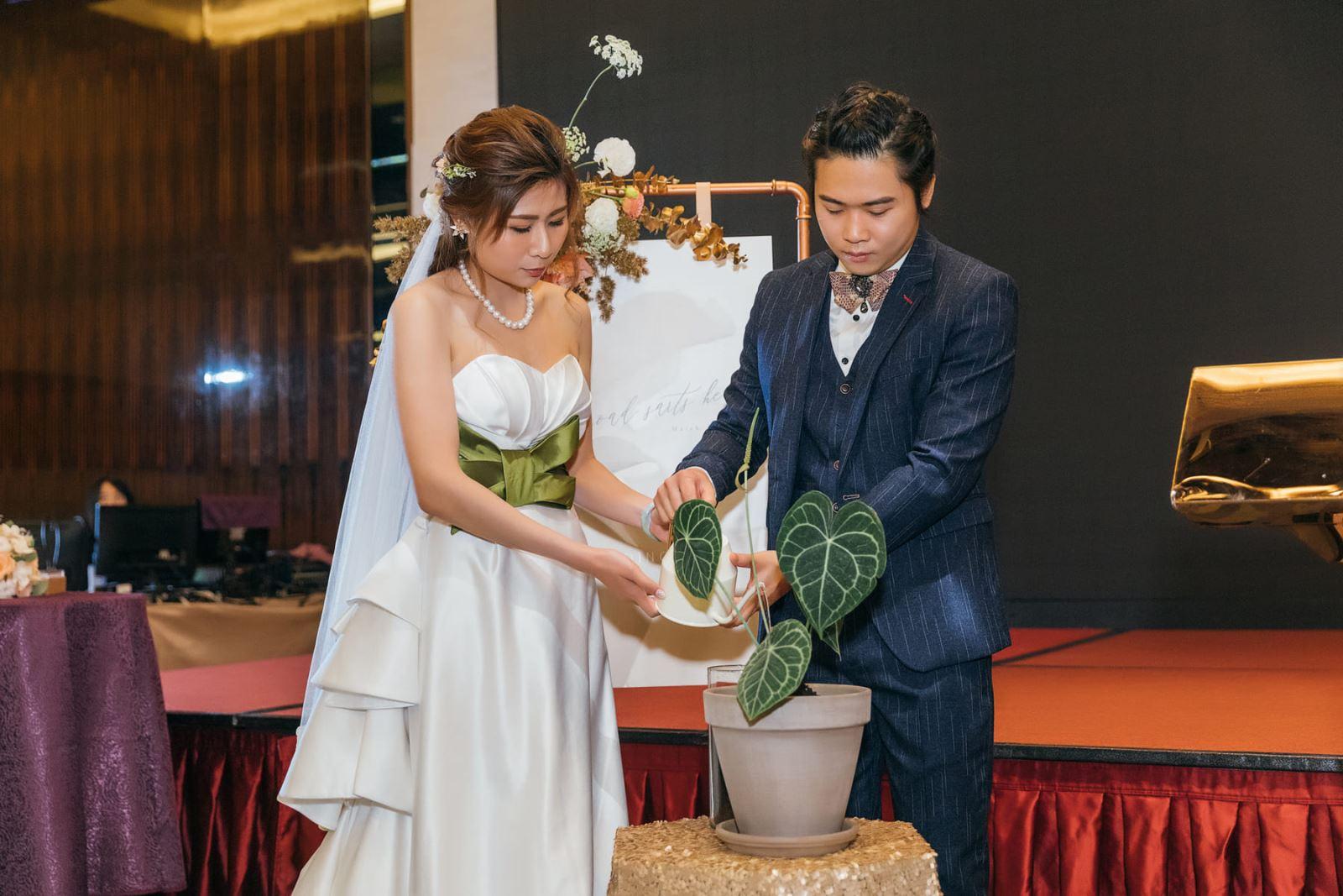 植栽婚禮謝親恩禮物圓葉花燭